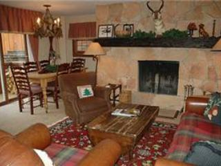 CHATEAU CHRISTIAN, 210 - Vail vacation rentals