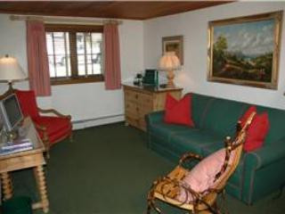 CHRISTIANIA LODGE, 105 - Vail vacation rentals