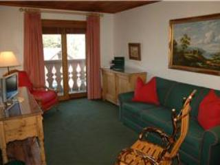 CHRISTIANIA LODGE, 305 - Vail vacation rentals