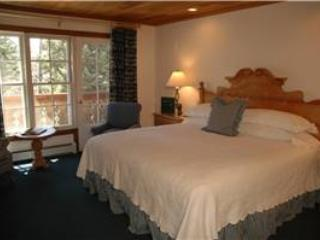 CHRISTIANIA LODGE, 306 - Vail vacation rentals