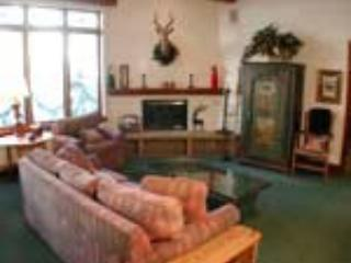 PLAZA LODGE #3 - Image 1 - Vail - rentals