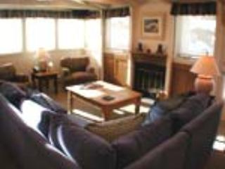 PLAZA LODGE #5 - Vail vacation rentals