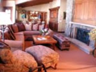 PLAZA LODGE #7 - Image 1 - Vail - rentals