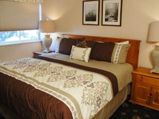 VILLA VALHALLA - UNIT 02 - Vail vacation rentals