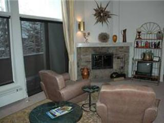 VILLA VALHALLA - UNIT 10 - Vail vacation rentals