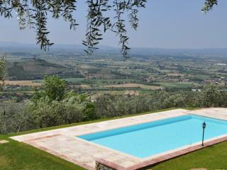 Vallibona, rare panoaramic Villa in the midst of peace and greenery. - Cortona vacation rentals