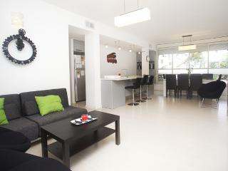 Raanana Luxury -Exclusive central 3 BR apt (REF06) - Ra'anana vacation rentals