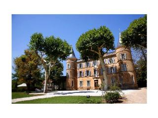 Chateau De Robert - Correns vacation rentals