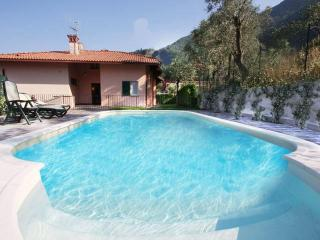 Beautiful villa, lakeview, POOL & private beach - Casciana Terme vacation rentals