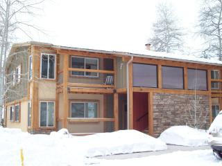 Just steps to Fanny Hill, perfect for small family - Snowmass Village vacation rentals