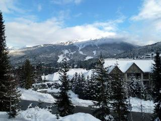Fantastic Views from Every Room! - Whistler vacation rentals