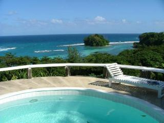 Halcyon - Port Antonio - Port Antonio vacation rentals