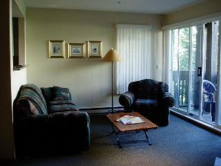 Stoney Creek Lagoons Vacation Home - Whistler vacation rentals