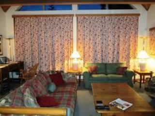 Spacious and cosy living room - Paul and Corinne Varty - Whistler - rentals
