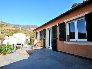Lambiccu - Amazing Luxury Apartment in Manarola - Manarola vacation rentals