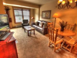 8902 The Springs 100 Yards to Gondola *1bedrm 1 bath 4th floor great view of slopes - Keystone vacation rentals