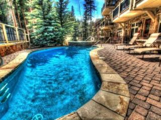 Keystone: 3029 Lone Eagle 1 bdrm 2 bth ski in ski out - Keystone vacation rentals