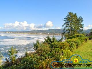 3406 Sunset - Ocean Front on Tillamook Head - Seaside vacation rentals