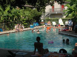 Downtown Fantastic Location by the month and more. - Austin vacation rentals
