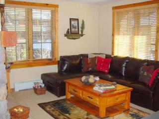 8496 Dakota Lodge - Keystone vacation rentals