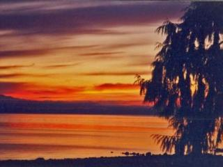 Breathtaking 3 Bedroom Vancouver Island Ocean and Beach Front Home in Bowser - Bowser vacation rentals