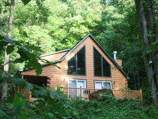 3 Bedroom Chalet in North Carolina mountains - Robbinsville vacation rentals