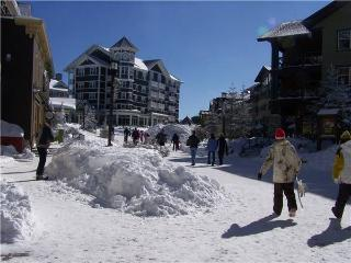 Snow Princess - Snowshoe vacation rentals