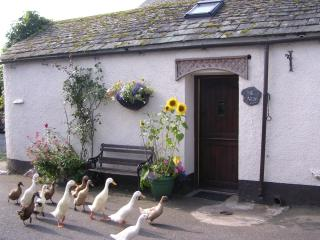 The Nest for 2 in village by farm,stream,ducks - Keswick vacation rentals