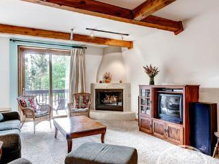Suites at Ten Mile 103 Two (TM103Two) - Breckenridge vacation rentals