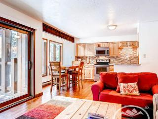 Inner Circle 8 (IC8) - Breckenridge vacation rentals