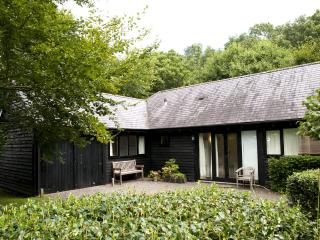 A lovely secluded 1 bed cottage in rural Wiltshire - Wiltshire vacation rentals