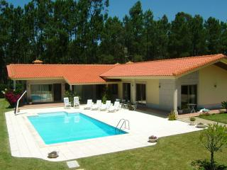 Large 3 bdr Villa in Esposende 45km from Porto - Northern Portugal vacation rentals