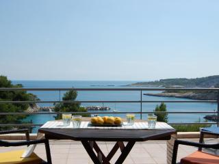 Seafront Villa, 6/7 Bedrooms,outstanding location - Votsi vacation rentals
