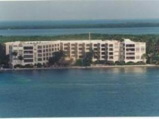 THE PALMS 301 - Islamorada vacation rentals