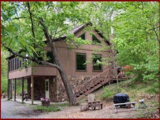 Wildwood Chalet - Allegheny Mountains vacation rentals