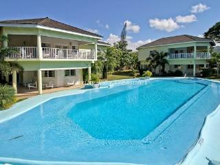 JAMAICA VILLA WITH PRIVATE BEACH & 40 FOOT POOL - Montego Bay vacation rentals