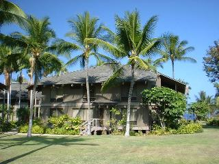 Kanaloa at Kona--Large, Luxurious 2BR Family Condo - Inverness vacation rentals
