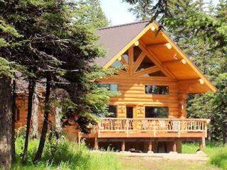 Alaskan lodging among the Spruce trees and moose. - Anchor Point vacation rentals