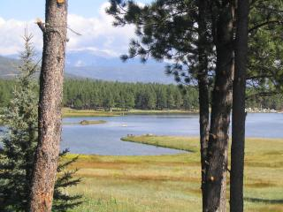 Fantastic view & all you need for 1 person or 12! - Angel Fire vacation rentals