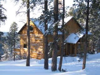 Luxury Cabin in the Black Hills of South Dakota - South Dakota vacation rentals