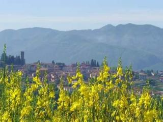 3 bedrooms holiday villa in Barga (Tuscany-Lucca) - Barga vacation rentals