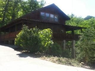 Bring your drog! Enjoy nature or just some quiet time. - Gatlinburg vacation rentals
