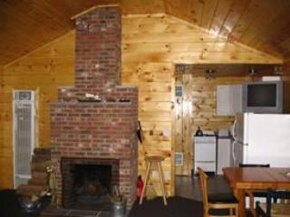 Fireplace - Sun Valley Cottages, Gilford House, Weirs Beach NH - Laconia - rentals