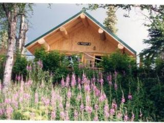 Orca Lodge on the Kenai River in Soldotna, Alaska - Soldotna vacation rentals