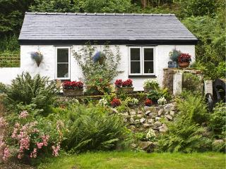 WATERMILL STUDIO COTTAGE, pet friendly, country holiday cottage, with a garden in Afonwen, Ref 4472 - Mold vacation rentals