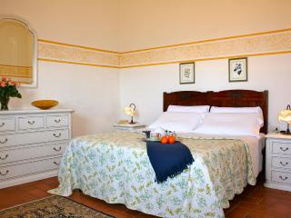 Nice indipendent house among Florence Siena Lucca - Montespertoli vacation rentals