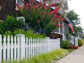 11 PENNSYLVANIA - Rehoboth Beach vacation rentals