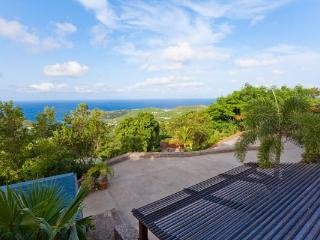 Private St Barts villa with a nice breeze & the sounds of nature WV NAM - Barbados vacation rentals