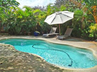Secluded Ocean-View Cottage with Private Pool - Kaunakakai vacation rentals