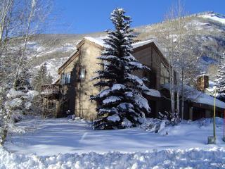 Beautiful Vail Ski House! 3 bedrooms - Vail Ski House- Very Close to Slopes! - Vail - rentals